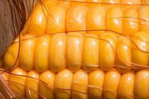 roasted-corn-salad